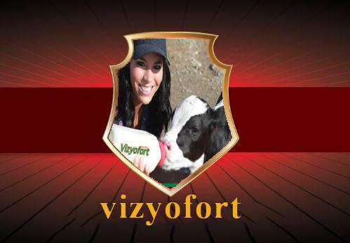 vizyofort